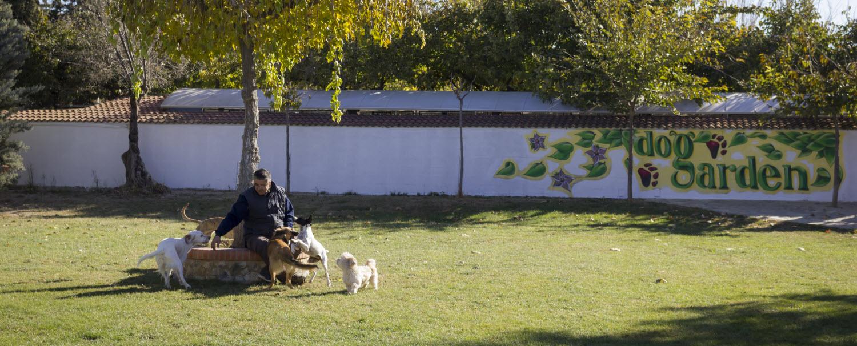 Guardería para perro en Zaragoza Dogarden