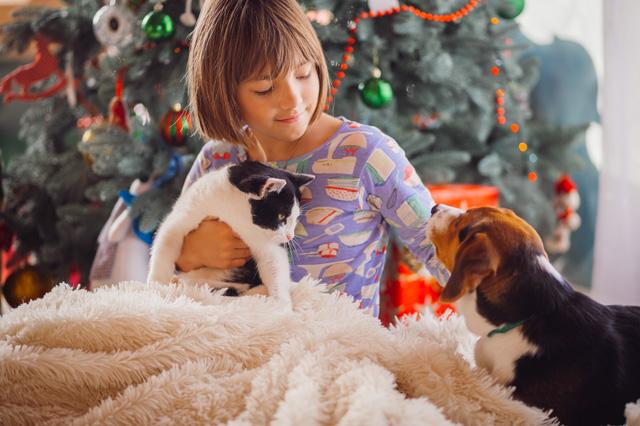 navidad-con-mascotas-(2)