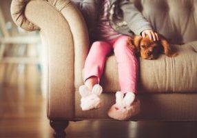 Perros y niños para buena convivencia